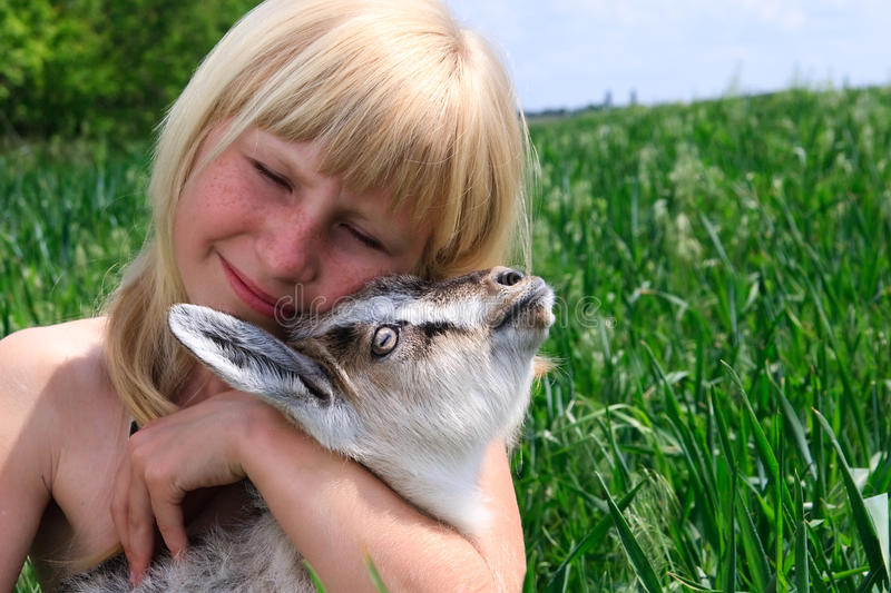 The young girl with goat stock photos
