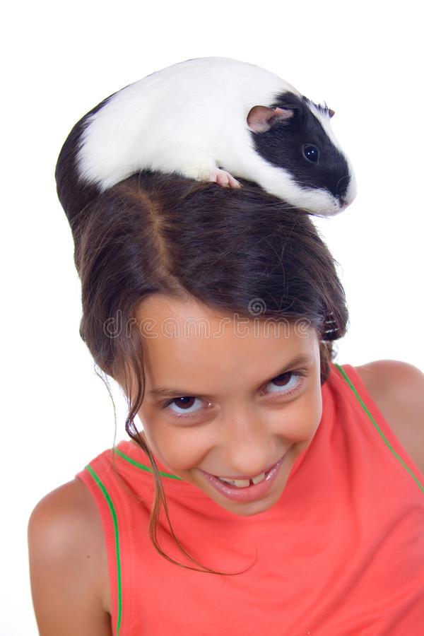 Young girl with guinea pig royalty free stock photo