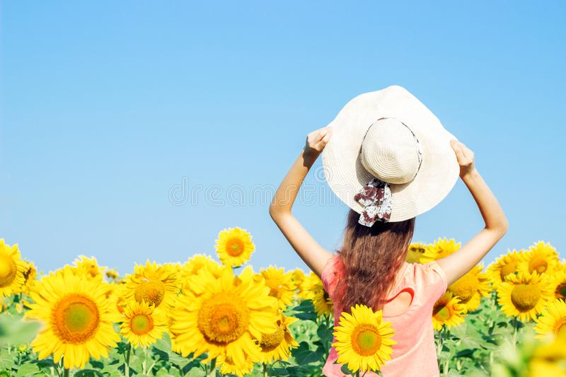 Young girl in a hat in a field of sunflowers in the summer. The view from the back. Floral landscape stock photography