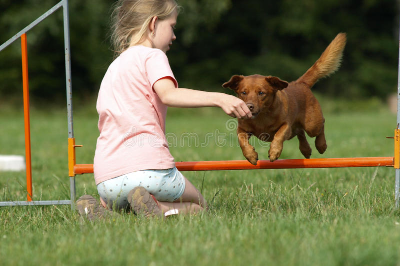 Download Young girl and her dog. stock image. Image of sport, play - 19995967
