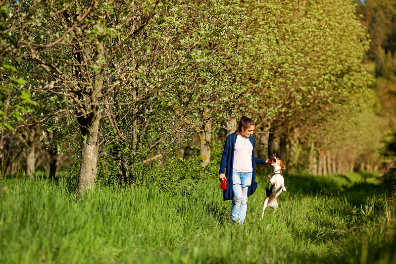 Young girl with her dog playing in the park. stock images