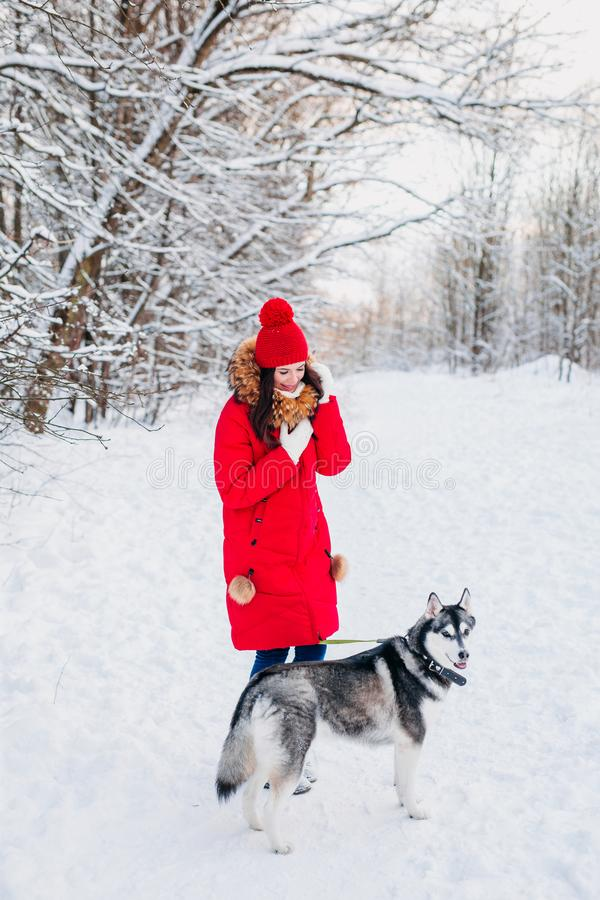 Young girl with her husky dog in winter park. Domestic pet. Husky. Young girl with her husky dog in winter forest. Domestic pet. Husky royalty free stock photos