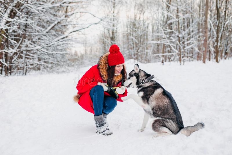 Young girl with her husky dog in winter park. Domestic pet. Husky. Young girl with her husky dog in winter forest. Domestic pet. Husky stock photo