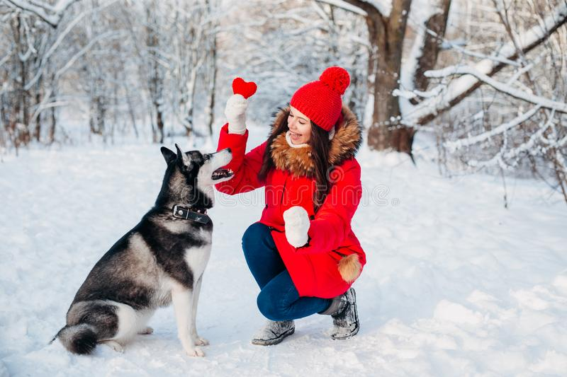 Young girl with her husky dog in winter park. Domestic pet. Husky. Animal love royalty free stock photos