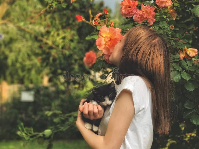 Young girl and her kitty stock image