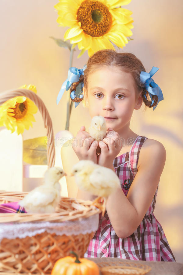 Young girl holding a chicken in his hand in the studio stock images