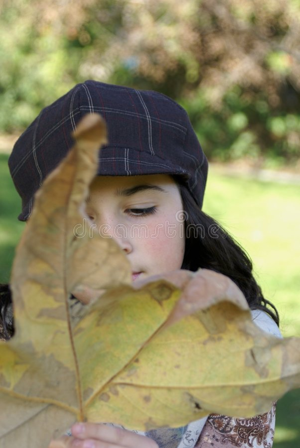 Young girl holding a large leaf in Autumn royalty free stock image