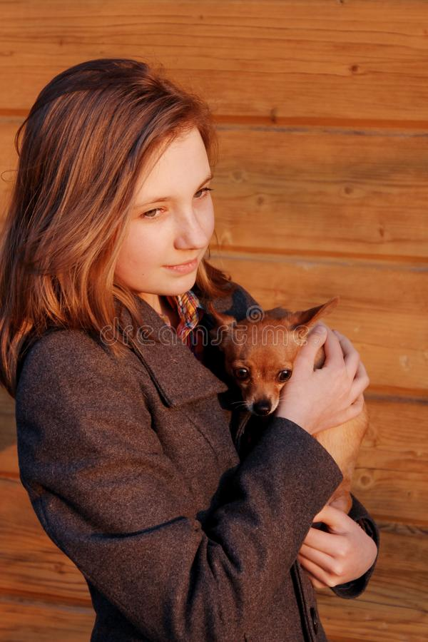 Young Girl Holding A Little Dog Over Wooden Background. Owner And Pet.  Pretty Young Caucasian Girl And Dog. People, Animals Concept royalty free stock image
