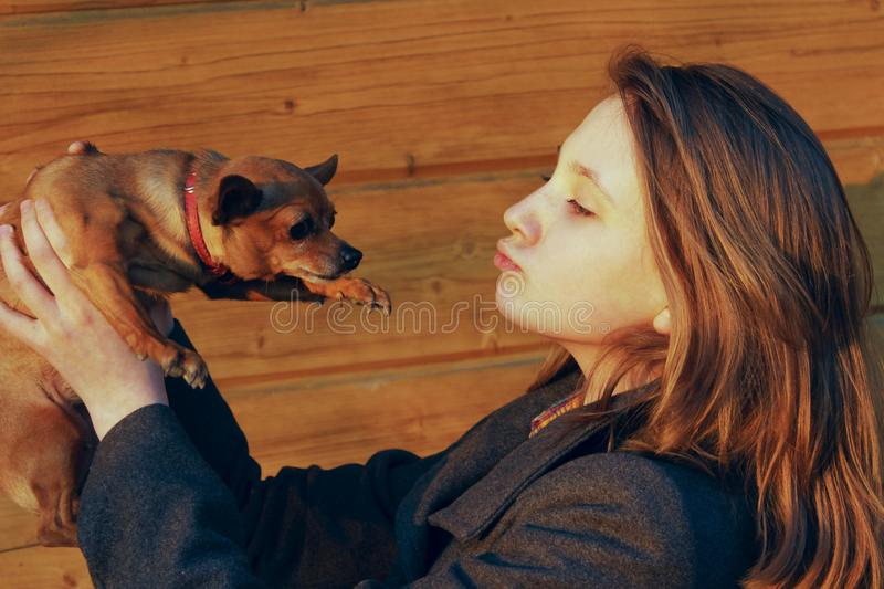 Young Girl Holding A Little Dog Over Wooden Background. Owner And Pet.  Pretty Young Caucasian Girl And Dog. People, Animals Concept stock photos