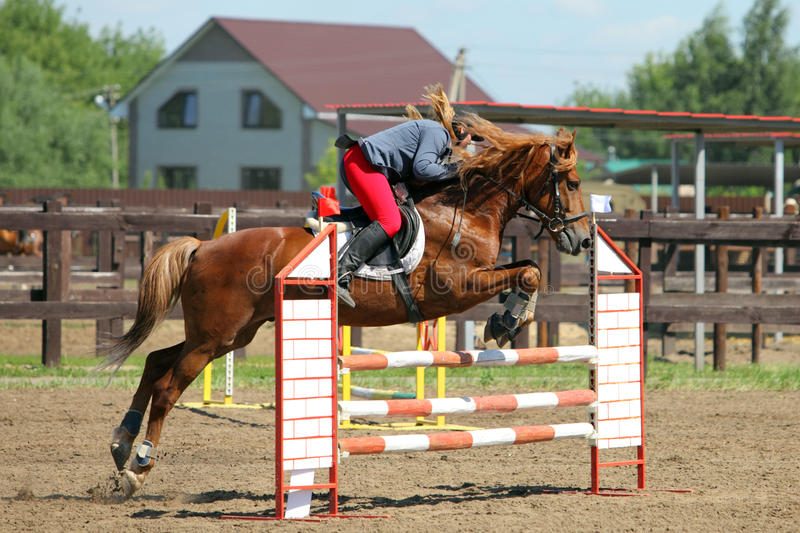 Young girl jumping with bay horse stock photography