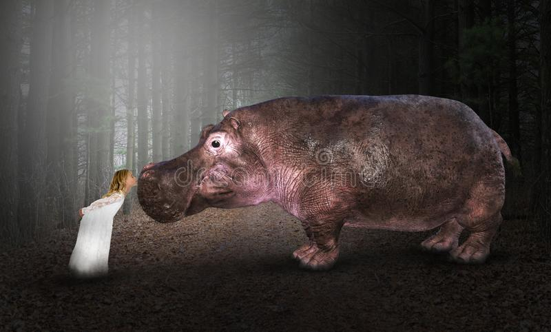Hippo, Hippopotomus, Nature, Wildlife, Girl. A young girl kisses a hippo or hippopotamus. Abstract fantasy concept for peace, love, nature, and wildlife royalty free stock image