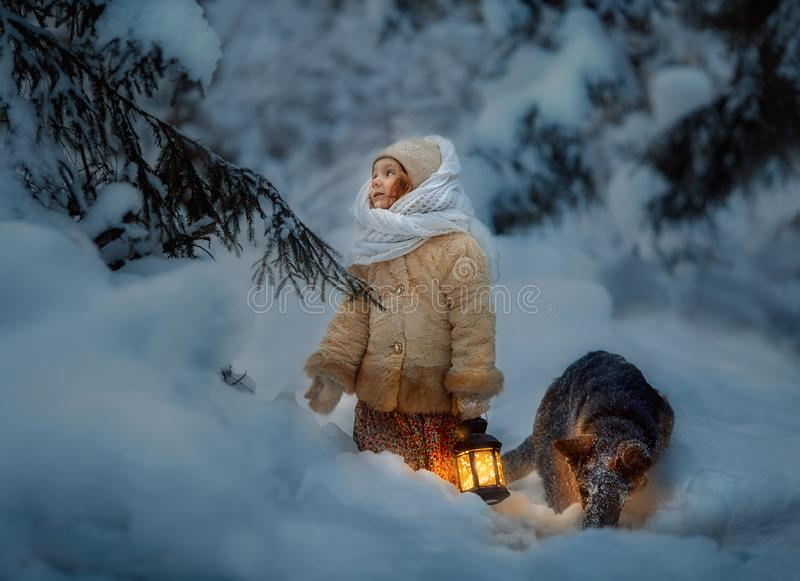 Night in the snowy forest stock image