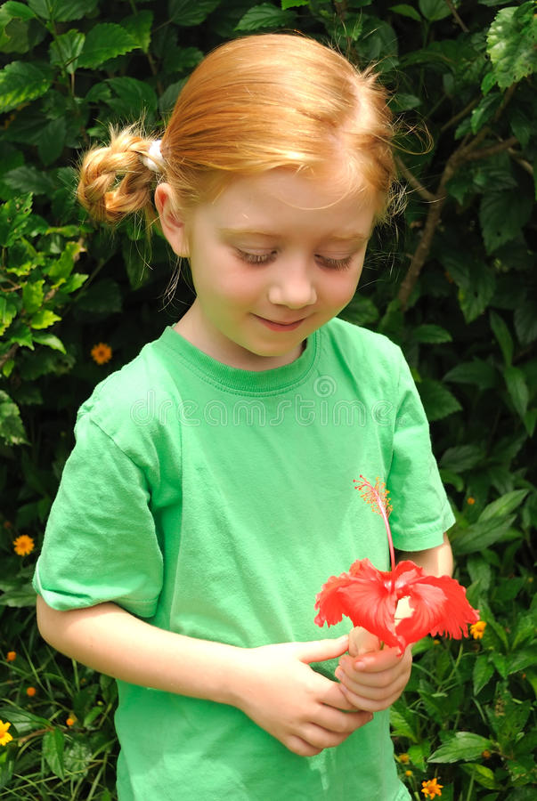 Young girl looking at red flower in a garden. A pretty young girl in green looking happily at a red flower she is holding in a garden royalty free stock photography