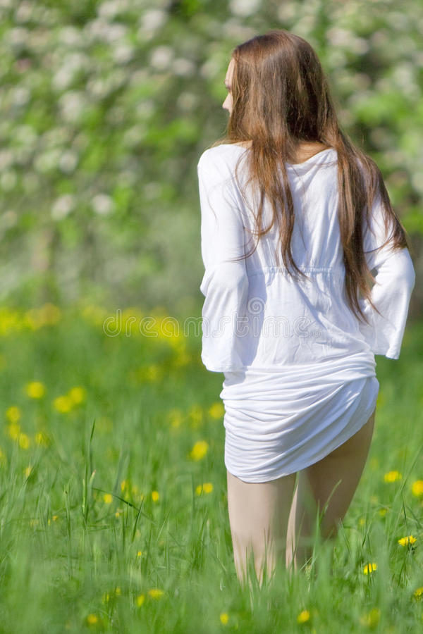 Young girl is on the meadow stock photography