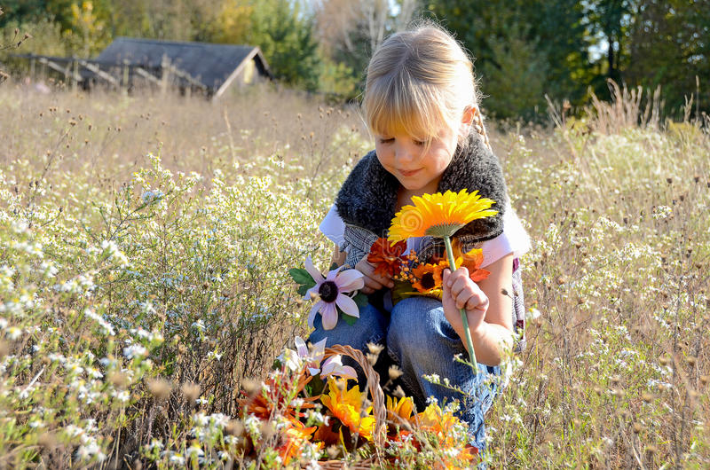 Young girl in meadow with autumn flowers stock photography