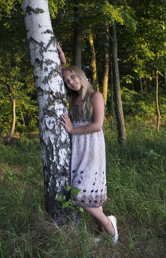 Young girl near the birch in a beautiful dress stock photos