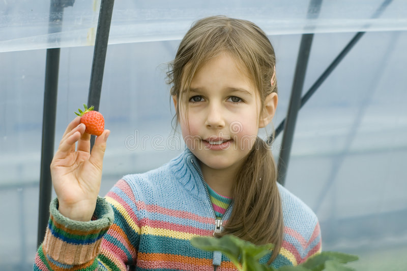 Young girl offering strawberry royalty free stock photography