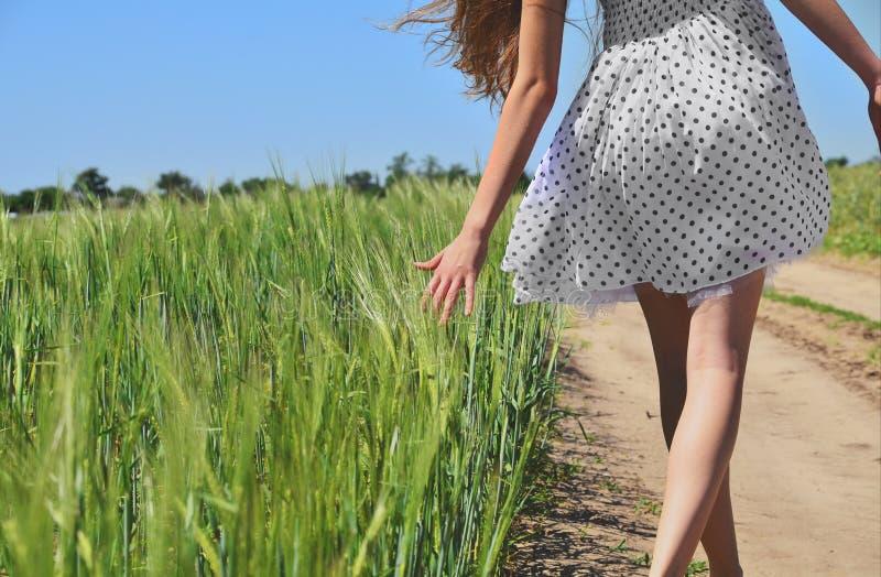 Young girl outdoors enjoying nature. Beautiful teenage model girl in yellow dress walking on the wheat field in sun light. stock photo