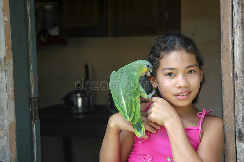 Young girl with parrot royalty free stock images