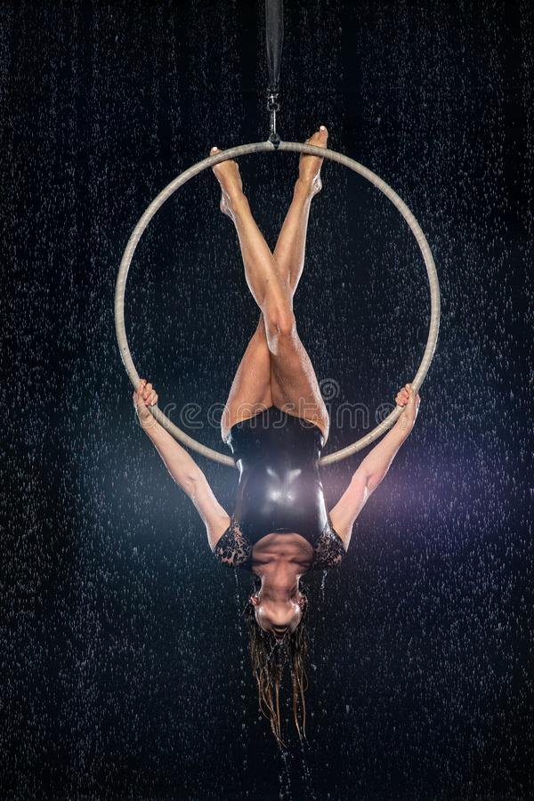 A young girl performs the acrobatic elements in the aerial hoop. Black Aqua Studio royalty free stock photos