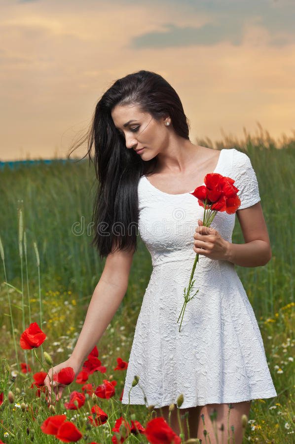 Young girl picking fresh poppies with cloudy sky in background. Portrait of beautiful brunette woman in a field full of poppies royalty free stock photos