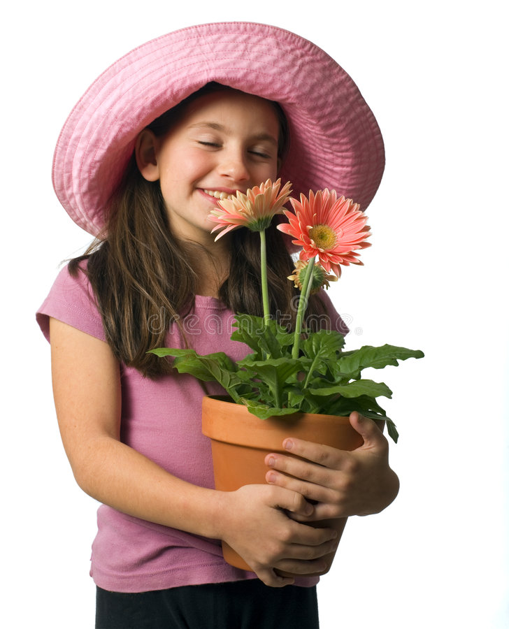 Download Young Girl Pink Daisies Royalty Free Stock Photo - Image: 7279735