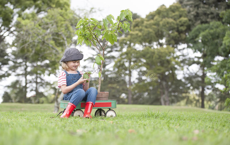 Young girl planting tree in park eco-aware royalty free stock photography