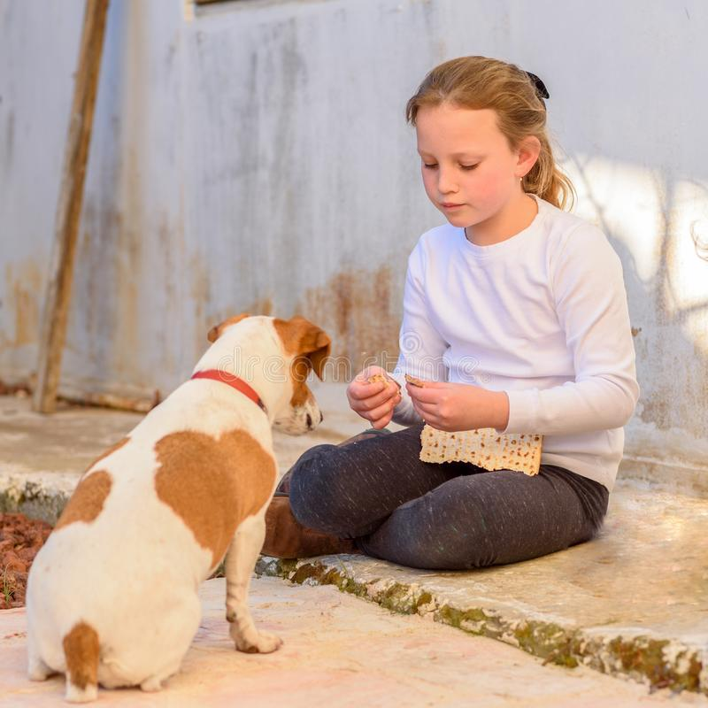 Young girl playing with pet dog jack russell terrier outdoor. stock images