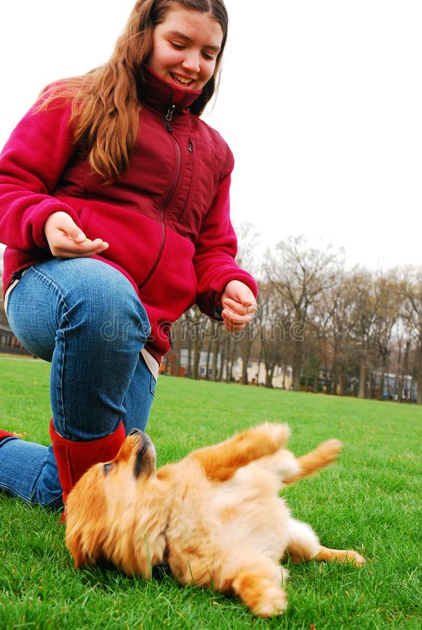 A young girl plays with her dog. In a park, teaching him to roll over royalty free stock images