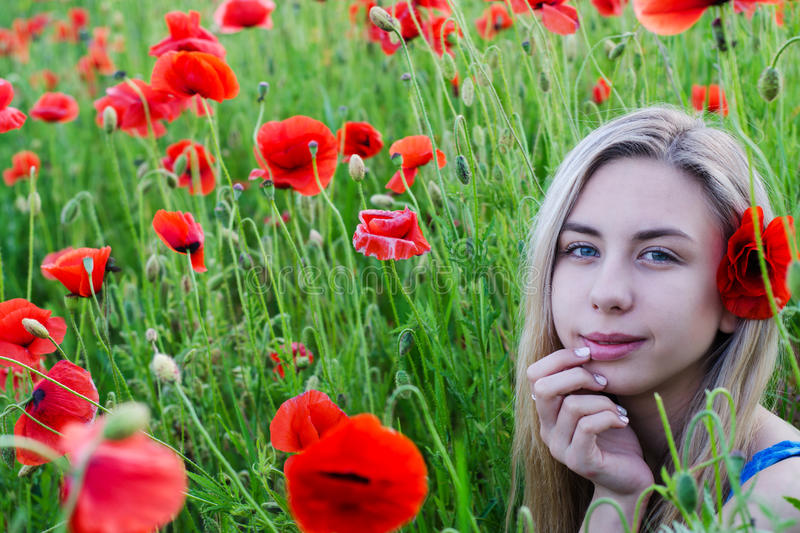 Young girl in the poppy field stock photos