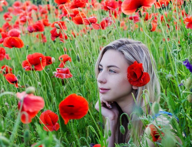 Young girl in the poppy field stock photo