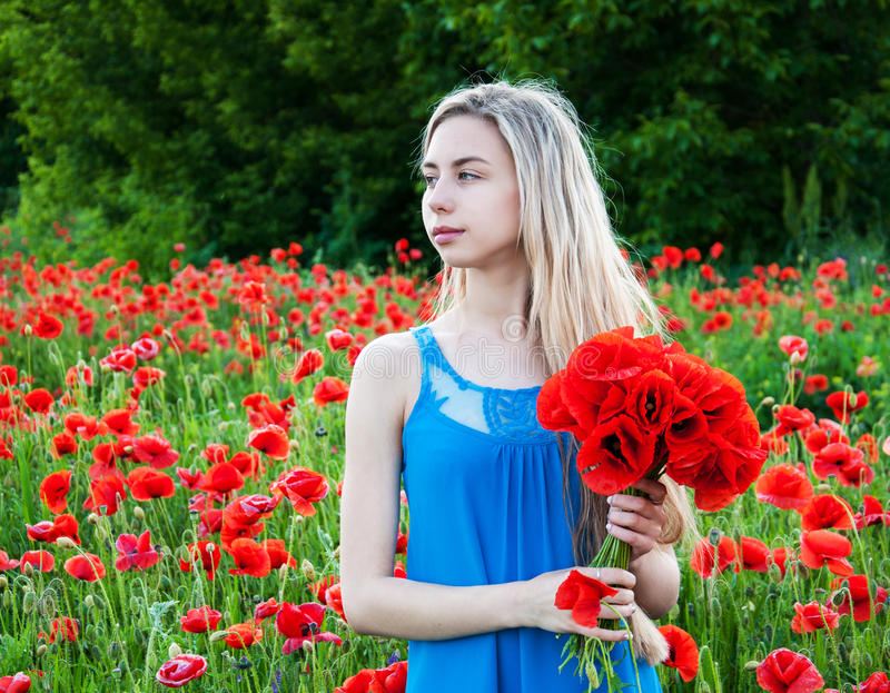 Young girl in the poppy field stock image