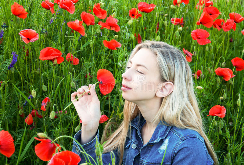 Young girl in the poppy field. Beautiful young girl in the poppy field stock photography