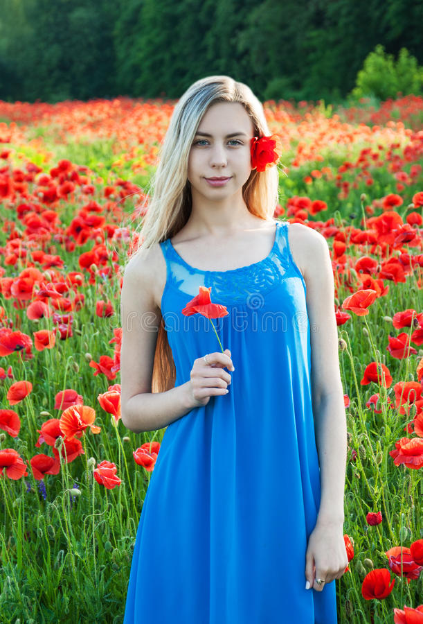 Young girl in the poppy field. Beautiful young girl in the poppy field royalty free stock photos