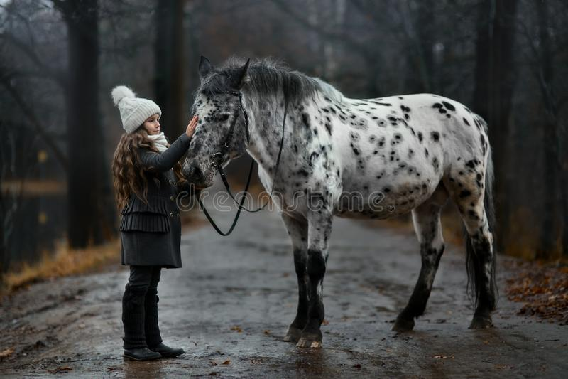Young girl portrait with Appaloosa horse and Dalmatian dogs royalty free stock image