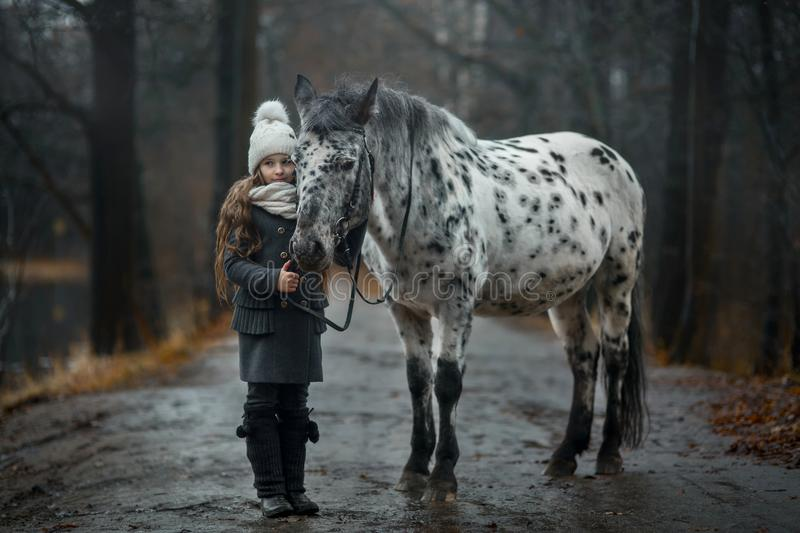 Young girl portrait with Appaloosa horse and Dalmatian dogs. In rainy autumn park royalty free stock photos