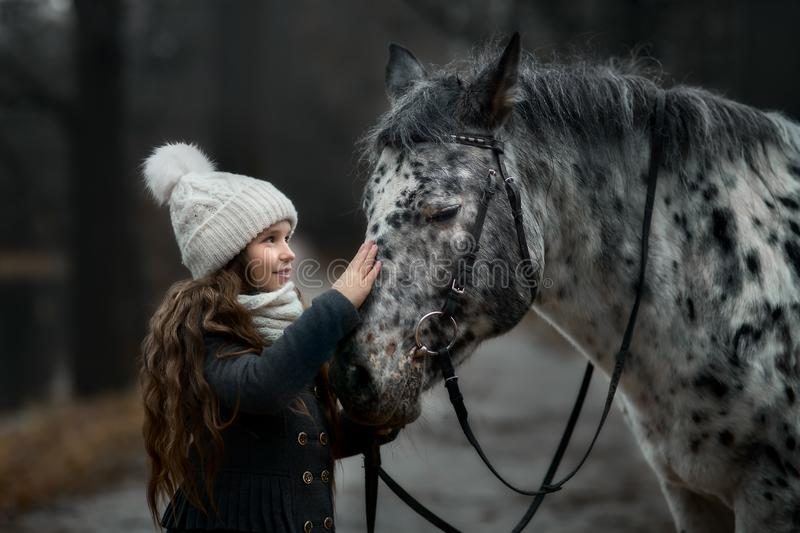 Young girl portrait with Appaloosa horse and Dalmatian dogs royalty free stock images