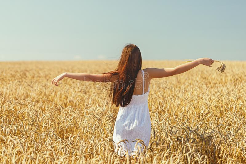 Young girl raised her hands in the rays of sunlight on the background of a field with ripe wheat stock image