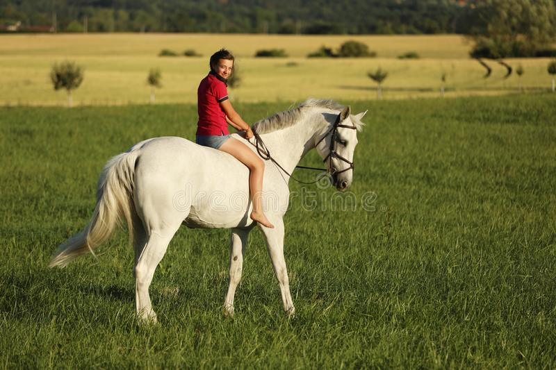 Young girl on roan horse walk on meadow in late afternoon without saddle, look back royalty free stock image