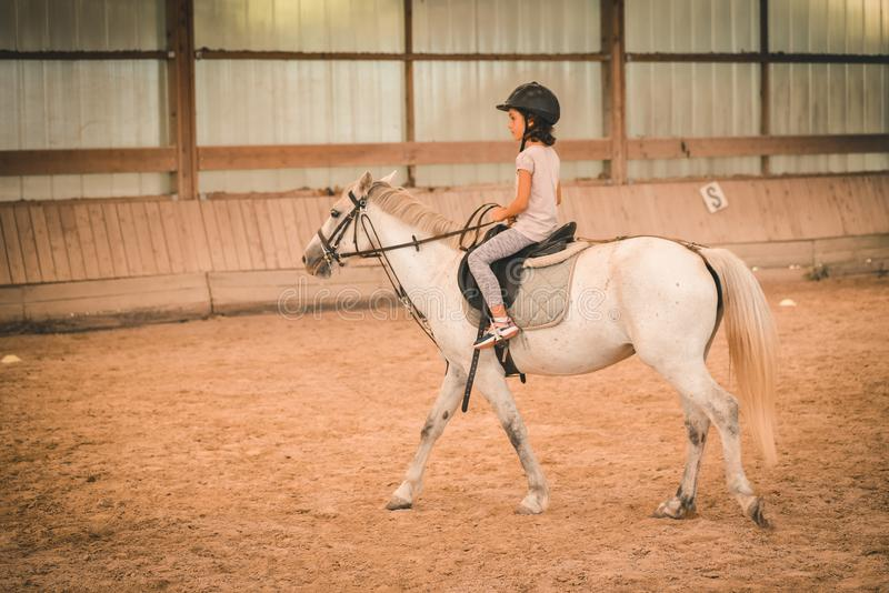A young girl riding a horse in arena. stock image