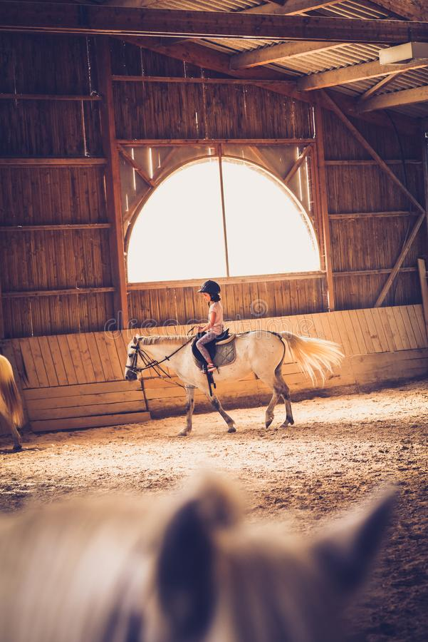 A young girl riding a horse in arena. stock photography