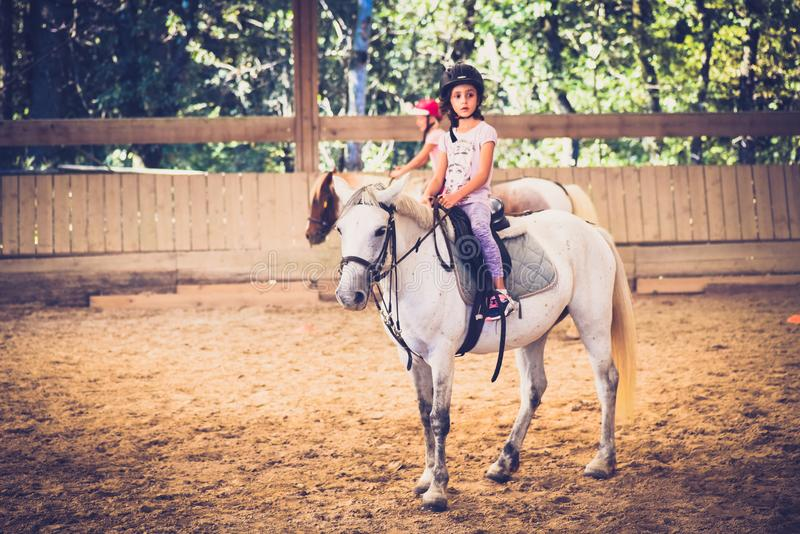 A young girl riding a horse in arena. stock images