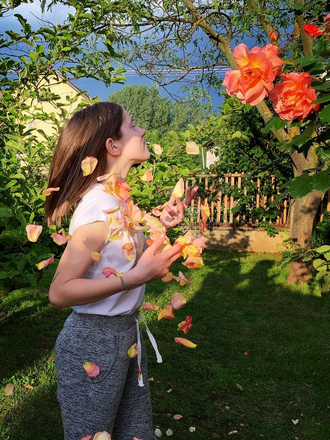 Young girl in the rose garden royalty free stock images