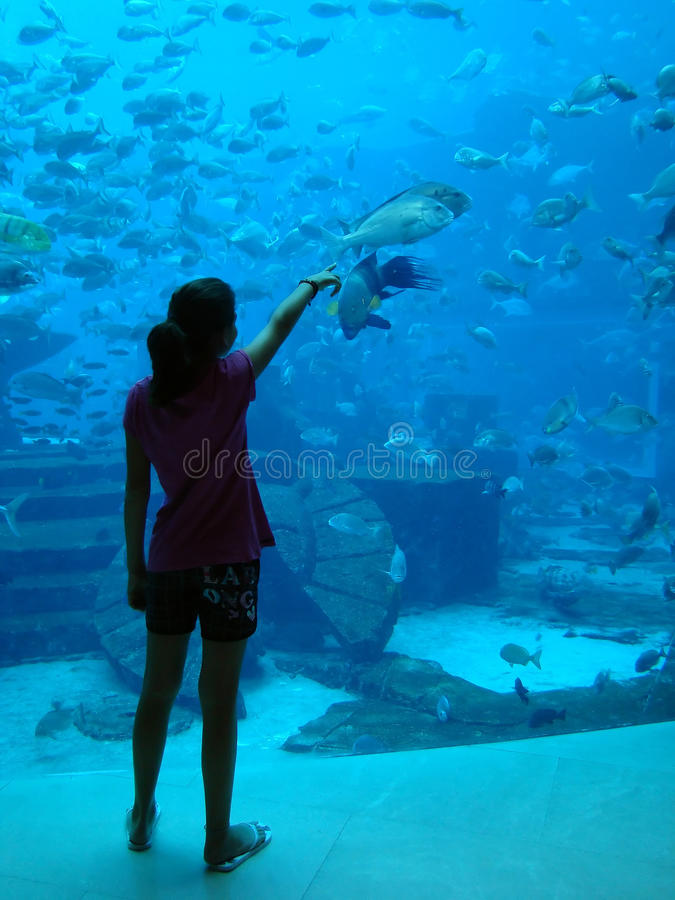 Free Young Girl Showing Fish Royalty Free Stock Photography - 16820707