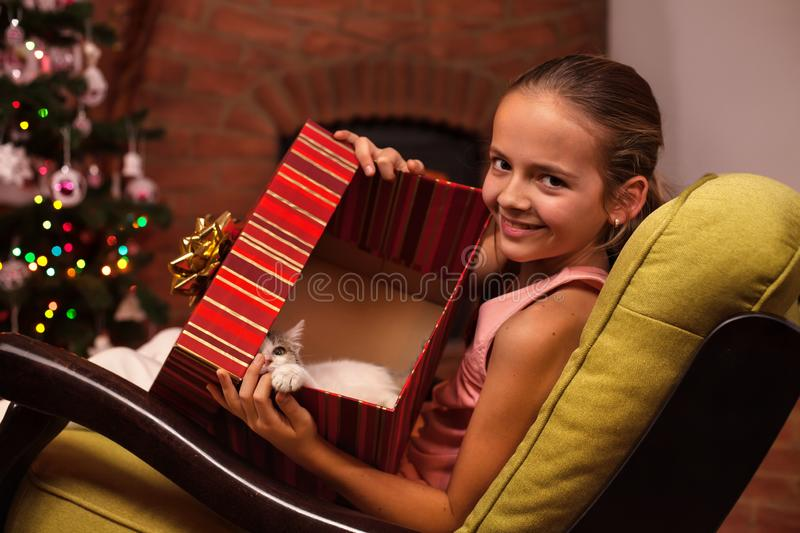 Young girl showing her christmas present in a large box - a cute kitten. Young girl sitting in armchair showing her christmas present in a large box - a cute stock photos