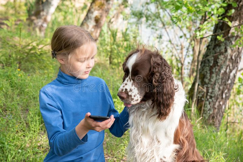 A young girl shows something to her dog in a mobile phone. A child plays with a dog and telephone stock image