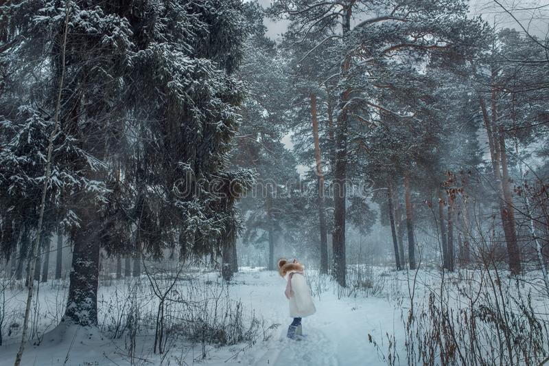 Young girl in snowy forest royalty free stock image