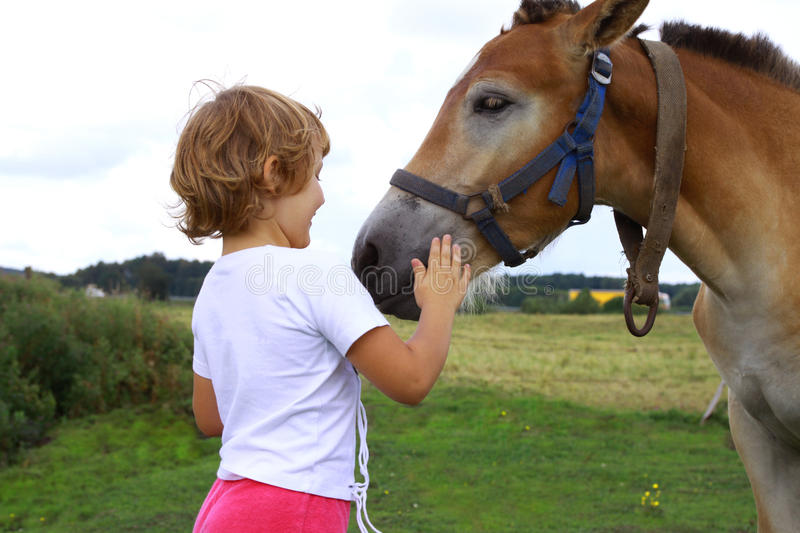 Young Girl Stroking Horse Stock Image