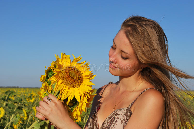 Young girl with a sunflower royalty free stock photo