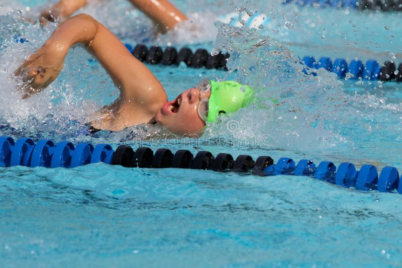 Young Girl swimming freestyle in race royalty free stock photography